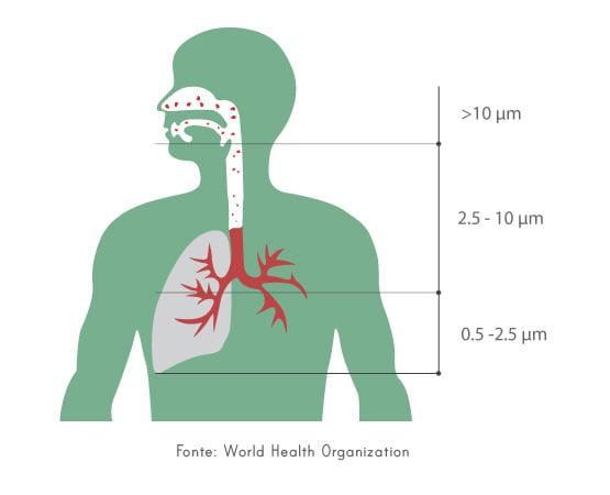 Material particulado do sistema respiratório