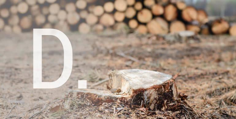 D-Desflorestação