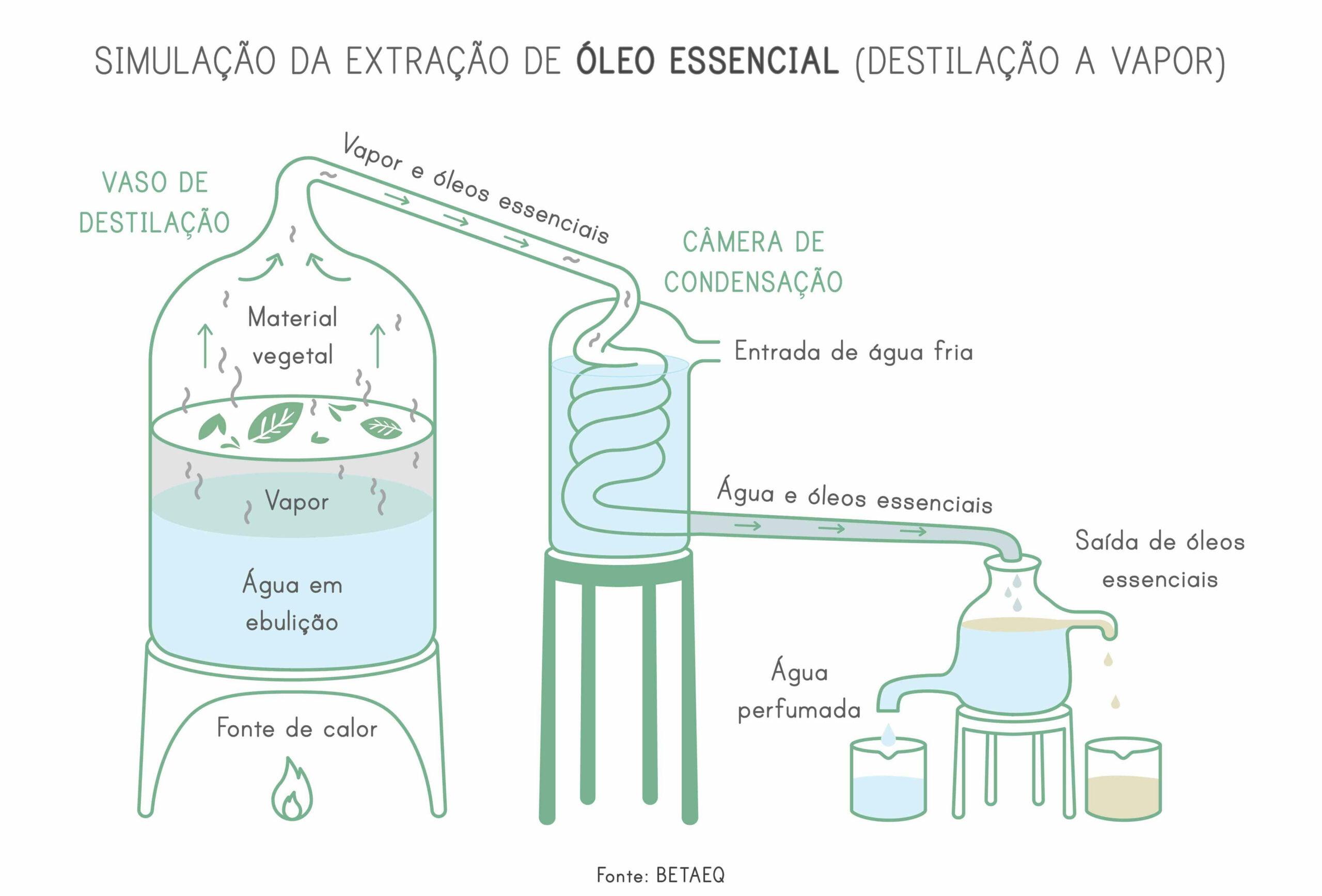 Óleos_Essenciais_Destilação_a_Vapor_Mind_The_Trash_23